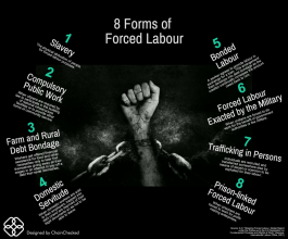 Blog for Workers' Day 1 May 2018 on Labour Trafficking from The Resource Line Team